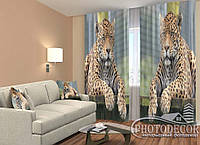 """ФотоШторы """"Леопарды"""" 2,5м*2,6м (2 половинки по 1,30м), тесьма"""