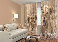 """ФотоШторы """"Маленькие львы"""" 2,5м*2,6м (2 полотна по 1,30м), тесьма"""