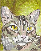 Полосатый кот схема