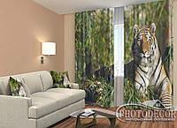 """ФотоШторы """"Мудрость тигра"""" 2,5м*2,9м (2 половинки по 1,45м), тесьма"""