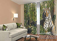 """ФотоШторы """"Мудрость тигра"""" 2,5м*2,6м (2 половинки по 1,30м), тесьма"""