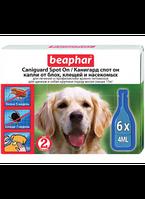 Beaphar Caniguard Spot On 6 пипеток -капли от блох и клещей для щенков и собак крупных пород (> 15кг) (13205)