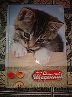 Дневник школьный Кот
