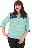 Блуза Alenka Plus 1536-11, фото 1