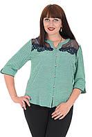 Блуза Alenka Plus 1536-13, фото 1