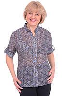 Рубашка Pshenichnaya 8060-1