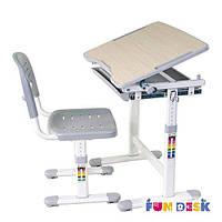 Комплект FunDesk Парта 47х66 см и стул-растишка для детей 3 - 10 лет ТМ FunDesk Серый PICCOLINO GREY