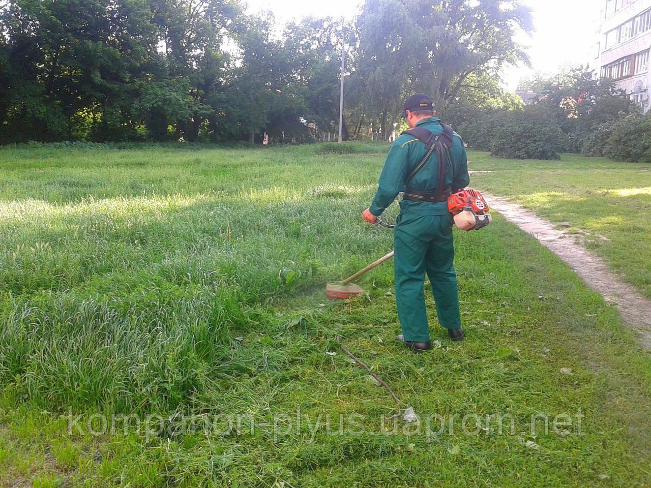 Скосить траву. Покосить траву. Скосить траву на даче. Скосить траву на участке. Покос травы и бурьяна.