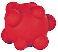 Мяч Trixie Ball with Bumps для собак резиновый, с шипами, 7 см, фото 1