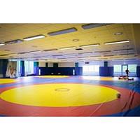 Мат борцовский с цветной накидкой кв м 160 кг на 3 м  Тia-sport