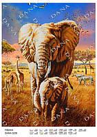 """Схема на ткани для вышивки бисером DANA """"Африка""""  3238"""