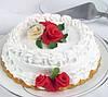 Краситель пищевой Диоксид титана (белый) Е171   1 кг