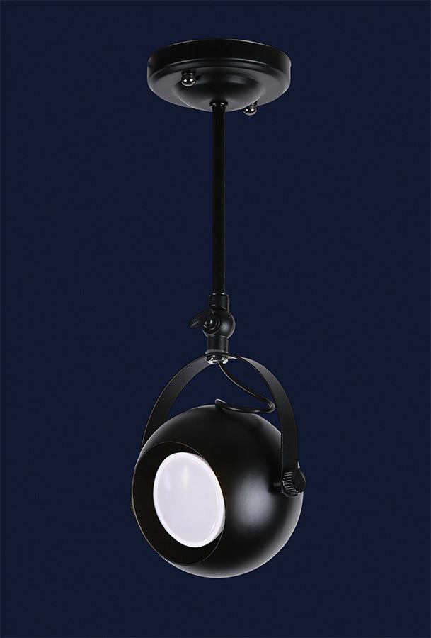Подвесной светильник LOFT L521209-1A BK  110мм