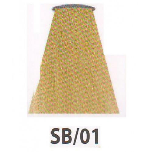 Краска SB/01 Холодный блонд 60 мл