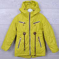 Куртка подростковая демисезонная Кузя#66-302 для девочек. 110-134 см. Лайма. Оптом., фото 1