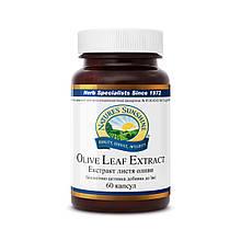 Кращий засіб від тромбів Екстракт листя оливи.