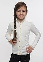 Блуза для девочки длинный рукав ТМ Смил арт. 114494