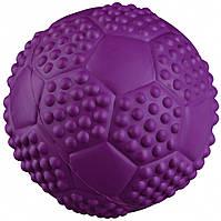 Мяч Trixie Sport Ball для собак резиновый, с пищалкой, 5.5 см, фото 1