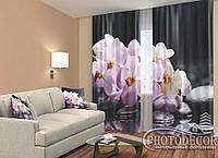 "ФотоШторы ""Гілка орхідеї на каменях 2,5 м*2,9 м (2 полотна по 1,45 м), тасьма"
