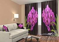 """ФотоШторы """"Гілка орхідеї на чорному"""" 2,5 м*2,6 м (2 полотна по 1,30 м), тасьма"""