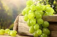 Отдушка  для мыла Виноград,Роскосметика (усиленная концентрация)