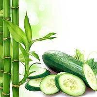 Отдушка  для мыла бамбук и огурец,Роскосметика (усиленная концентрация)