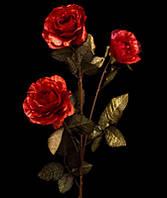 Цветы Роза красный перламутр