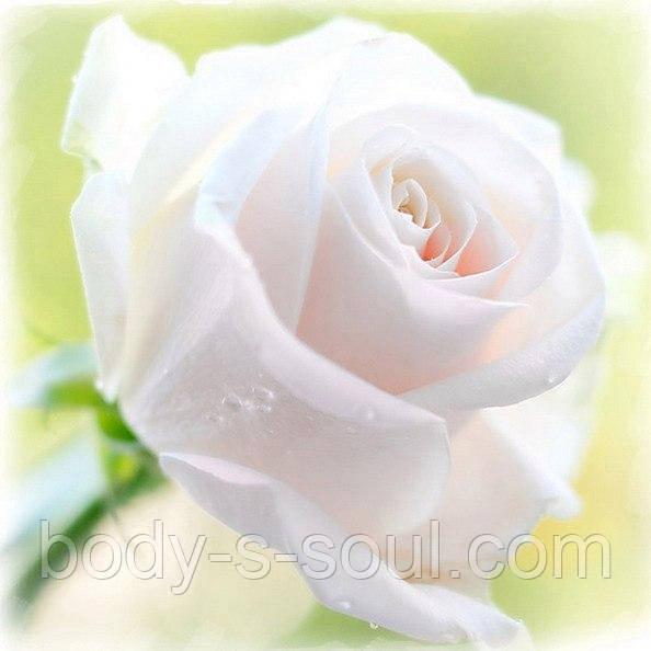 Отдушка  для мыла роза белая,Роскосметика (усиленная концентрация)