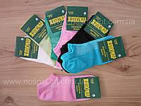 Носки женские Житомир сетка цветные (до косточки) опт