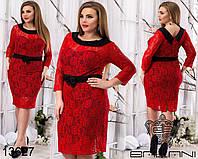 Нарядное прямое платье из гипюра на подкладке, с воротничком и элегантной спинкой, разные расцветки, батал