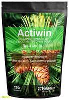Комплексное минеральное удобрение для хвойных и вечнозеленых растений Actiwin (Активин), 250г, NPK 12.5.20+ME