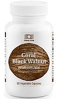 Корал черный орех
