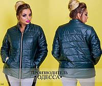 Куртка 242 /р6