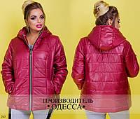 Куртка 243 /р6