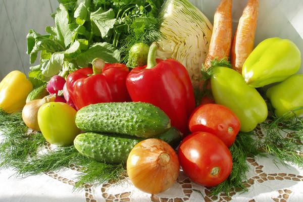 Отношение овощных растений к условиям внешней среды. Водный режим
