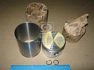 Гильза цилиндра с поршнем KNORR, Renault Magnum, Premium, Midlum, Kerax (7000 781 501)