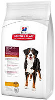 Hill's SP Canine Adult AdvFitness Large Breed с курицей, 3 кг