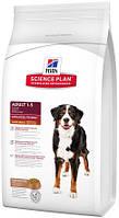 Hill's SP Canine Adult AdvFitness Large Breed с ягненком и рисом, 12 кг