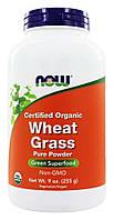 БАД Пророщенная пшеница, пырей, Wheat Grass, Now Foods,органик, 255 грамм