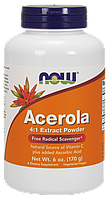 БАД Ацерола и витамин С, Acerola 4:1,  Now Foods, экстракт, 170 г