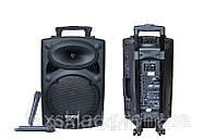Активная акустическая комбо система DP 107