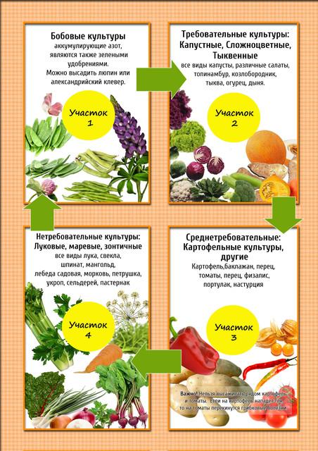 Организационно-хозяйственное и агротехническое значение севооборота
