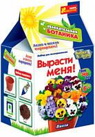 Игровой набор Захватыващая ботаника Виола, Ranok Creative (219621)