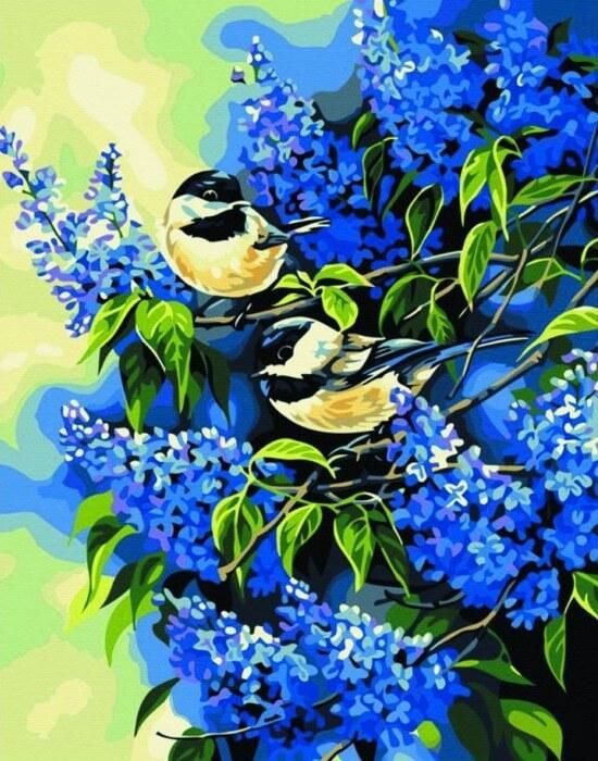 Картина по номерам Птички на ветках сирени КН216