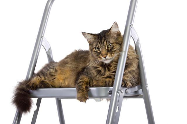 Лестницы-стремянки алюминиевые
