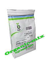 ПАБЛО F1 / PABLO F1 - свекла столовая, 5000 семян, Bejo