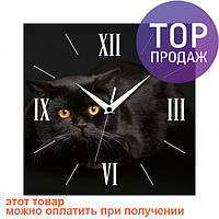 Настенные Часы Panorama Черный Кот / Настенные часы