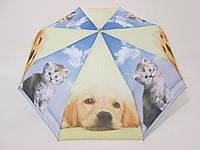 """Подростковый зонт полуавтомат с собакой """"Золотистый ретривер"""""""