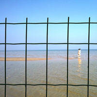 Сетка сварная Euro Fence 50*100 с ПВХ покрытием для заборов.