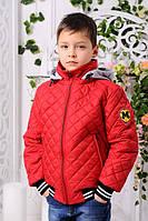 Куртка для мальчика короткая красная демисезонная синяя на молнии с капюшоном